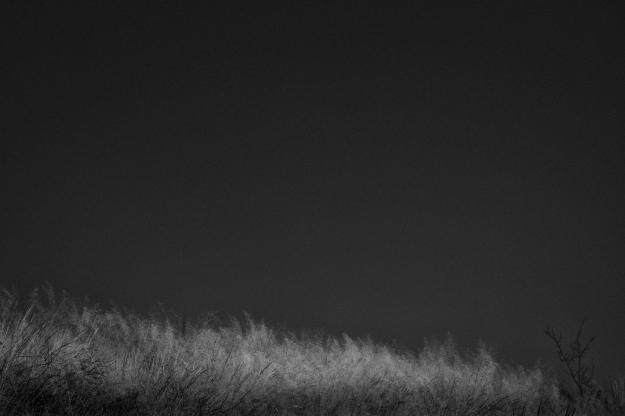 EMP_20161201_008-Edit